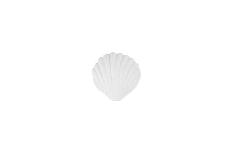 #60690-Flat Seashell-12g