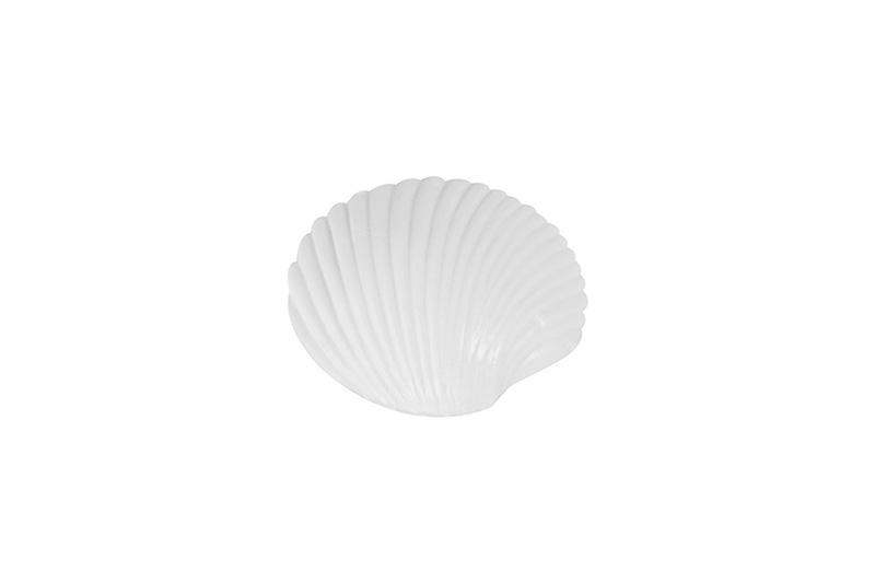 #62090-Flat Seashell-25g